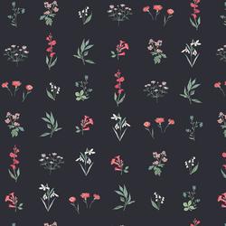 Botanical Study in Dark