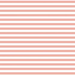 Horizontal Dress Stripe in Peony