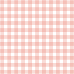 Gingham Check in Pink Peach
