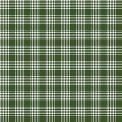 Plaid in Green