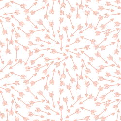 Arrows in Petal on White