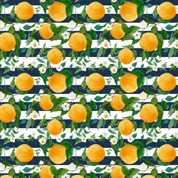 Small Oranges in Navy Stripes