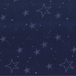 Lucky Stars Flannel in Navy