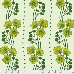 New Buttercups in Lime