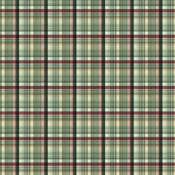 Painted Tartan in Holiday