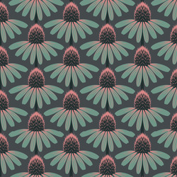 Echinacea in Dim