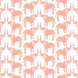 Tembo in Protea