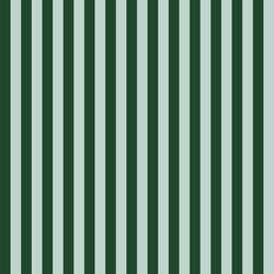 Cabana Stripe in Mint