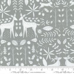 Forest Otomi in Raincloud