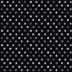 Moon Phases in Black