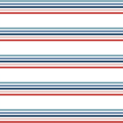 Parade Stripe in Liberty