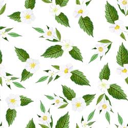 Strawberry Blossoms in White