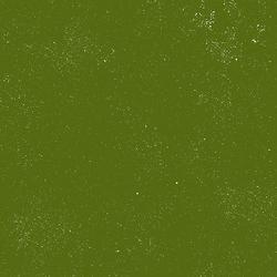 Spectrastatic in Seaweed