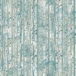 Pine Bark in Rain