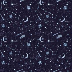 Night Sky in Indigo