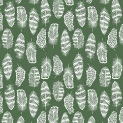 Little Plume in Kale