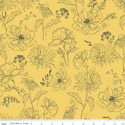 Wildflowers in Daisy