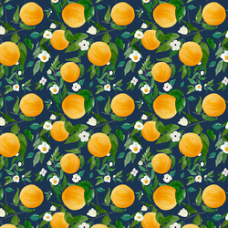 Small Oranges in Navy