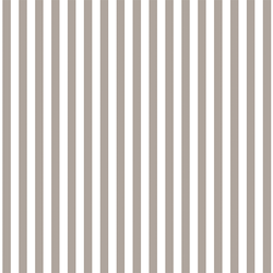 Dress Stripe in Taupe