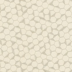 Hexagon in Pearl Pearlized