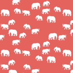 Elephant Silhouette in Salmon