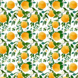 Small Oranges in White