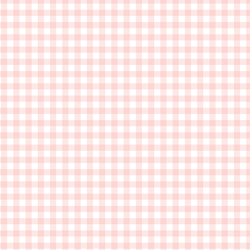 Gingham Check in Powder Pink