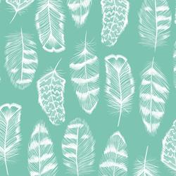 Plume in Succulent