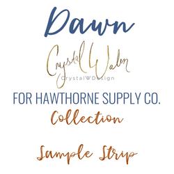 Dawn Sample Strip