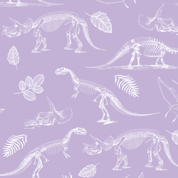Fossils in Lilac