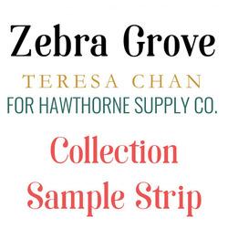 Zebra Grove Sample Strip