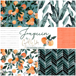 Joaquin Fat Quarter Bundle