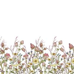 Pressed Flowers Double Border in Sweet Nothings