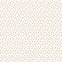 Small Spots in Pumpkin on White